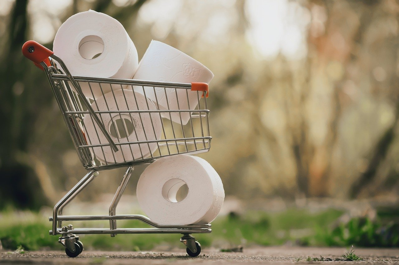 A Shopping Cart filled with toilet paper
